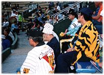 写真 阪神タイガースファンクラブ